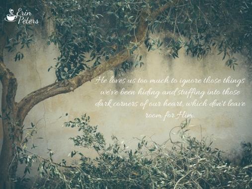 Pruning Blog post